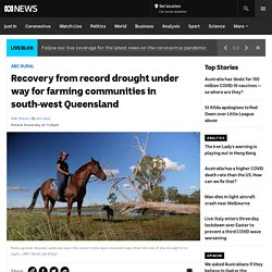 Recovery from record drought under way for farming communities in south-west Queensland