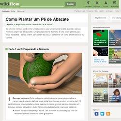 Como Plantar um Pé de Abacate: 16 Passos