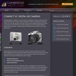 Compact vs. Digital SLR Cameras