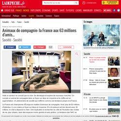 Animaux de compagnie: la France aux 63 millions d'amis... - 16/11/2014 - ladepeche.fr
