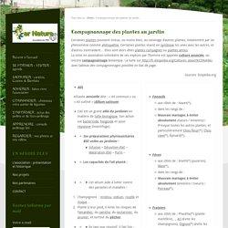 Compagnonnage des plantes au jardin - Jardins Par Nature