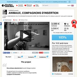 EVIDENCE presents ANIMAUX, COMPAGNONS D'INSERTION