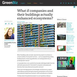 What if companies and their buildings actually enhanced ecosystems?