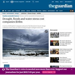 Drought, floods and water stress cost companies $14bn