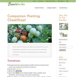 Companion Planting CheatSheet