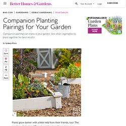 Companion Planting Pairings