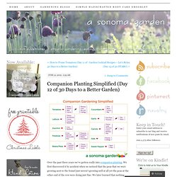 Companion Planting Simplified (Day 12 of 30 Days to a Better Garden)