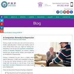 A Companion: Remedy to Depression