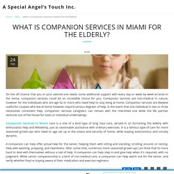 What Is Companion Services in Miami for the Elderly? - A Special Angel's Touch Inc.