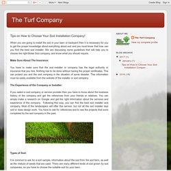 The Turf Company: Tips on How to Choose Your Sod Installation Company!