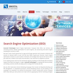 Seo Company India - Immortal Technologies Pvt Ltd