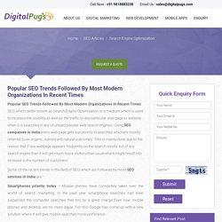 seo service in india: digital pugs media