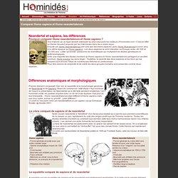 Comparaison Neandertal Sapiens