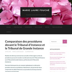 Comparaison des procédures devant le Tribunal d'Instance et le Tribunal de Grande Instance - Marie Laure Fouché