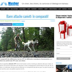Musher Experience, actu et conseils outdoor canin