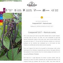 Comparatif 2017 - Haricots nains - Jardin d'essai