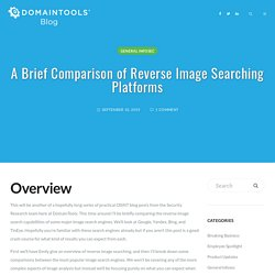 A Brief Comparison of Reverse Image Searching Platforms – DomainTools Blog