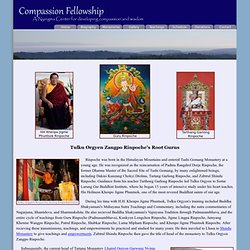 Compassion Fellowship
