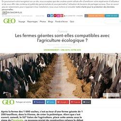 Les fermes géantes sont-elles compatibles avec l'agriculture écologique