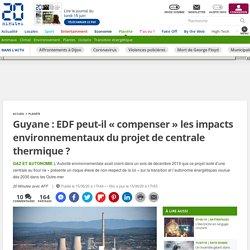 Guyane : EDF peut-il « compenser» les impacts environnementaux du projet de centrale thermique ?