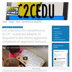 Les ceintures de compétences en CP : comment adapter le dispositif à des élèves apprentis scripteurs et apprentis lecteurs. – Nos ceintures de compétences
