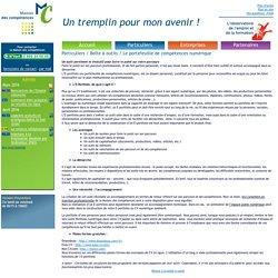 Maison des compétences - Caux vallée de Seine (Lillebonne) - Le portefeuille de compétences numérique