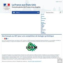 Des français au MIT pour une compétition de biologie synthétique - Consulat Général de France à Los Angeles