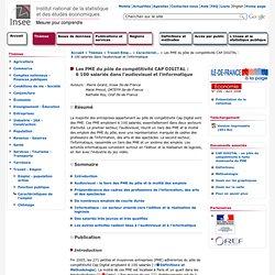 Travail-Emploi - Les PME du pôle de compétitivité CAP DIGITAL - 6 100 salariés dans l'audiovisuel et l'informatique