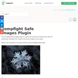 Compfight Safe Images Plugin – Edublogs Help and Support