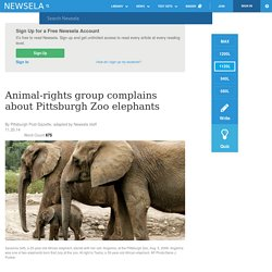Animal-rights group complains about Pittsburgh Zoo elephants