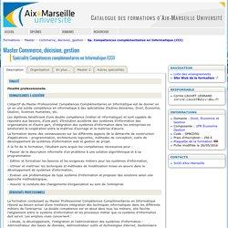 Aix Marseille Master Post Master Spé Compétences compl en Informatique (CCI)