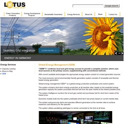 Lotus Energy Group - Complete Electrical Energy Solutions : CEO Stefan Amraly