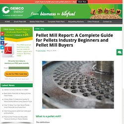Pellet Mill Report: A Complete Guide for Pellets Industry Beginners and Pellet Mill Buyers