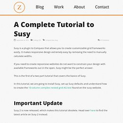 A Complete Tutorial to Susy — Zell Liew