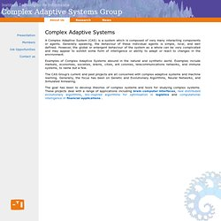 Complex Adaptive Systems Group Homepage