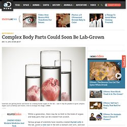 Complex Body Parts Could Soon Be Lab-Grown