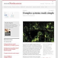Complex systems made simple