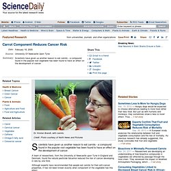 Carrot Component Reduces Cancer Risk