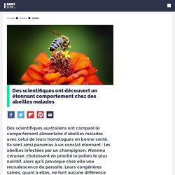 Des abeilles malades révèlent un étonnant comportement aux scientifiques