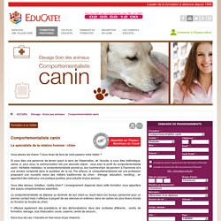 Comportementaliste canin, formation Educatel