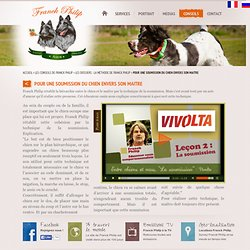 Educateur comportementaliste canin