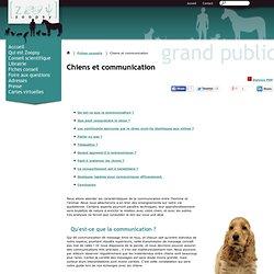 Chiens et communication, se faire comprendre de son chien - Comportement chien, Conseils de vétérinaires comportementalistes, fiches conseil éducation du chien communication du chien