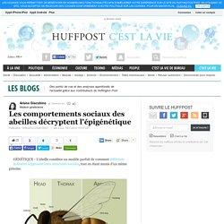 Les comportements sociaux des abeilles décryptent l'épigénétique