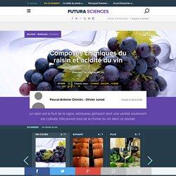 Composés chimiques du raisin et acidité du vin