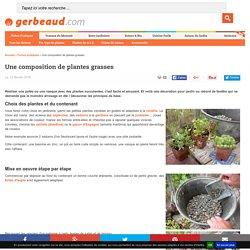 Composition de plantes grasses