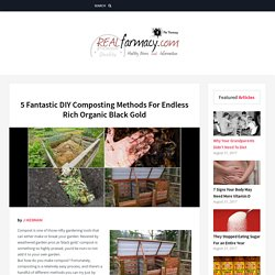5 Fantastic DIY Composting Methods For Endless Rich Organic Black Gold – REALfarmacy.com