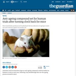 Anti-ageing compound set for human trials after turning clock back for mice