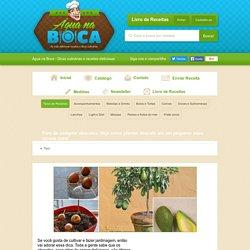 Pare de comprar abacates. Veja como plantar abacate em um pequeno vaso na sua casa! - Veja a Receita: