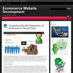 Comprehend the Real Importance of Ecommerce in Recent Times