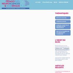 Compréhension et mémoires, ce qu'en disent les sciences cognitives - Colloque Pédagogie - Foyer de Cachan